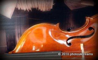 violine - photo by p4d