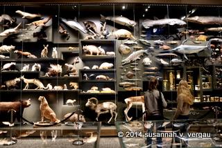 hessisches landesmuseum darmstadt 23.10.2014 - foto: susannah v. vergau